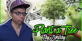 Plant a Tree with Tay